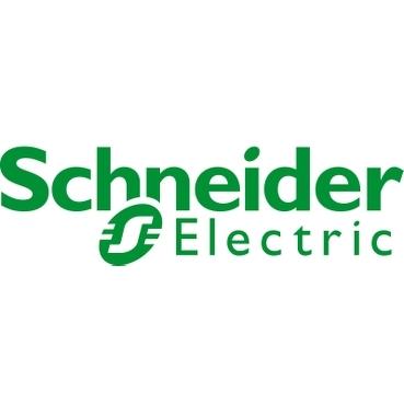 Schneider Electric accelera sulla sostenibilità